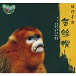 【正版全新直发】绿野寻踪―* 雍严格,雍立军,曹庆著 9787503851322 中国林业出版社