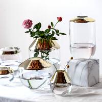 电镀透明玻璃花瓶家居软装饰品摆件餐桌水培植物容器插花