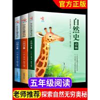 自然史 正版书籍 布封学校指定小学生三年级课外书8-12岁 文学史四五六年级畅销书儿童书籍10-15岁儿童文学书获奖读