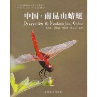 中国南昆山蜻蜓