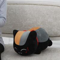 猫咪老师公仔毛绒玩具布娃娃玩偶抱枕生日礼物女生