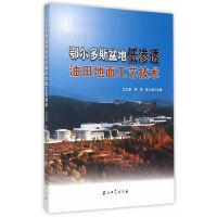 鄂尔多斯盆地低渗透油田地面工艺技术 9787518306305