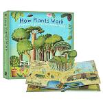 英文原版 How Plants Work 植物奥秘 植物是怎么生长 立体书 儿童科普百科