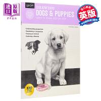 【中商原版】如何绘画系列:狗 英文原版 Drawing: Dogs & Puppies: Learn to draw