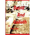 【预订】David and Goliath