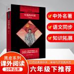 可爱的中国 入选小学5-6年级阅读指导目录(2020年版)黑皮阅读