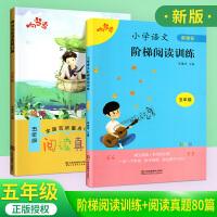 响当当小学阶梯阅读训练+阅读真题80篇五年级 阅读理解专项训练书五年级语文 小学五年级语文阅读理解训