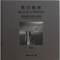 黑白视界:段岳衡眼中的安大略湖(一本用心灵感悟世界的大师佳作,带你走进段岳衡的黑白视界,感受黑白影像的极致魅力。摄影黑