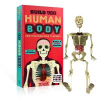 英文原版 How to Build a Human Body:如何构建一个人体 科普儿童趣味认知人的身体结构 附三D立