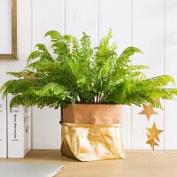 仿真绿植蕨草插花配叶波斯草室内植物墙背景墙装饰配草花器挂件