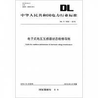 电子式电压互感器状态检修导则(DL\T1958-2018)/中华人民共和国电力行业标准