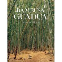 【预订】Bambusa Guadua