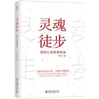 灵魂徒步――阳明心学管理智慧 李安 9787301295120 北京大学出版社