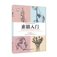 【正版现货】素描入门---西方经典美术技法译丛-W 克莱尔・沃森・加西亚,路雅琴 9787558600760 上海人民