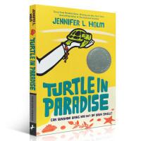 英文原版绘本书Turtle in Paradise天堂里的海龟 Jennifer L. Holm纽博瑞奖 畅销儿童文学