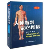 人体解剖彩色图谱第2版二版郭光文 全彩人体解剖学彩色学图谱搭奈特人体解剖学彩色图谱教材书 西医解剖学外科医生用书
