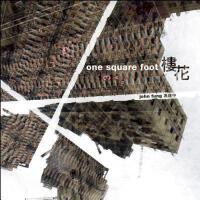 【预订】One Square Foot - Photography by John Fung