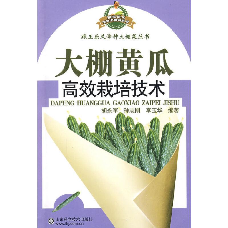 大棚黄瓜高效栽培技术—跟王乐义学种大棚菜丛 书