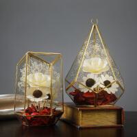 北欧饰品几何玻璃罩摆件干花家居装饰咖啡厅服装店创意摆设