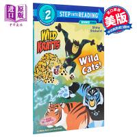 【中商原版】Step Into Reading2:Wild Cats! - Dlx Sir 阅读进阶2级:动物兄弟大猫