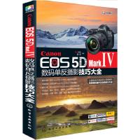 2册 佳能Canon EOS 5D Mark Ⅳ数码单反摄影技巧大全+Canon佳能单反摄影入门教材书 佳能5d4单反相
