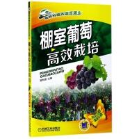 棚室葡萄高效栽培(双色印刷)/高效种植致富直通车