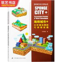 海绵城市+水环境治理的可持续实践 河流湖泊生态环境规划与治理 城市环境规划与景观设计书籍
