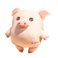20180527160447719小猪暖手插手枕头抱枕公仔布偶娃娃可爱超软羽绒棉午睡靠垫毛绒 50cm