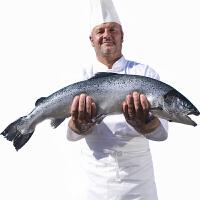 速鲜 智利进口整条三文鱼7.0-6.5kg 一条 盒装刺身新鲜生鱼片鲑鱼即食
