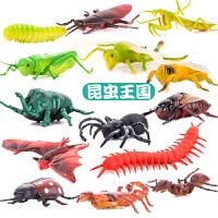 儿童恐龙玩具昆虫玩具仿真动物套装虫子动物玩具蜘蛛蚂蚁蜜蜂塑胶