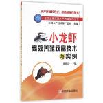 小龙虾高效养殖致富技术与实例