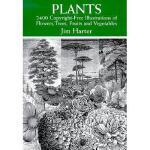 【预订】Plants: 2,400 Copyright-Free Illustrations of