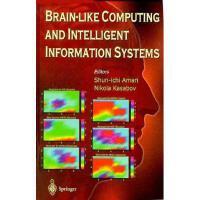 【预订】Brain-Like Computing and Intelligent Information