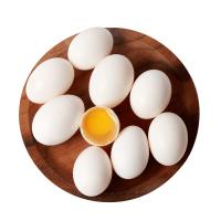 农谣鸽子蛋新鲜30枚 农家散养白鸽蛋鸽蛋包邮 杂粮喂养 宝宝辅食