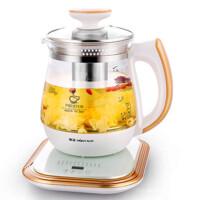 养生壶全自动加厚玻璃花茶壶黑茶煮茶器电热烧水壶养身