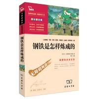 钢铁是怎样炼成的无障碍阅读彩插版励志版中小学新课标名著智慧熊7-8-9-10-11-12岁青少年儿童文学 三四五年级小