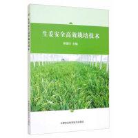生姜安全高效栽培技术