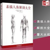 【量大从优】素描人体解剖大全 骨骼肌肉系统解剖线条图色书籍 素描人体解剖图谱 人体解剖学书肌肉骨骼解剖结构书美术绘画图