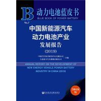动力电池蓝皮书:中国新能源汽车动力电池产业发展报告 中国汽车技术研究中心 大连松下汽车能源有限公司 978752015