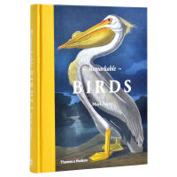 Remarkable Birds 非凡的鸟类 手绘风格鸟类插画书 鸟类介绍图案书籍