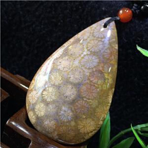 珠宝玉石珊瑚玉化石水滴吊坠配项链项坠一套【TQYS-8(A847)】