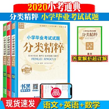 2020小学毕业考试试题分类精粹 英语+语文+数学  小升初重难点知识详解 课堂同步练习册