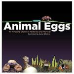 【预订】Animal Eggs: An Amazing Clutch of Mysteries Y9780979745