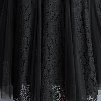 蕾丝半身裙网纱裙子女夏黑色高腰大码字裙半身长裙2018新款
