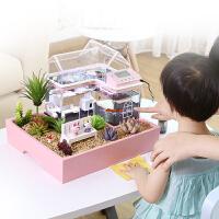小鱼缸迷你办公室鱼缸小型水族箱生态鱼缸懒人鱼缸热带鱼鱼缸