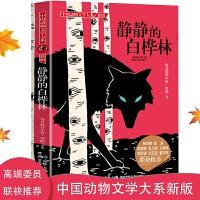 中国动物文学大系・静静的白桦林 拓展课外知识的新天地 辅助心灵阅读的枕边书 让孩子发现读书的乐趣 从此爱上阅读