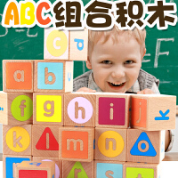 儿童积木玩具1-2周岁智力男孩3-6岁婴儿木制早教拼装女孩宝宝玩具