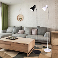 简约现代落地灯 客厅书房立灯 卧室落地台灯 创意遥控LED调光地灯