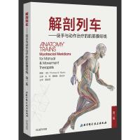 解剖列车――徒手与动作治疗的肌筋膜经线