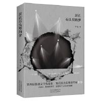 封在石头里的梦李浩9787530217375北京十月文艺出版社